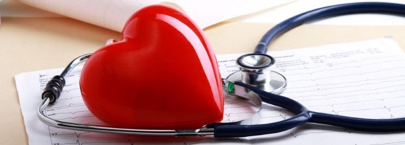 Картинки по запросу УЗИ сердца