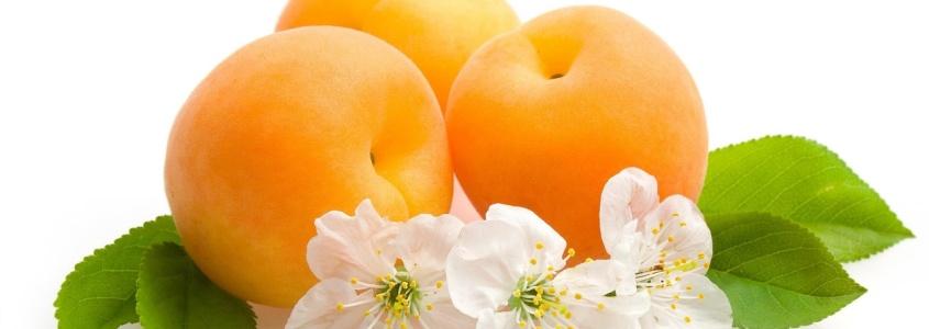 Персик - калорийность, польза и вред, полезные свойства