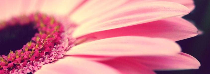 Светло розовые выделения на ранних сроках беременности